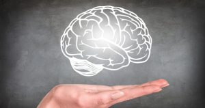 Presentation of an illustrated brain